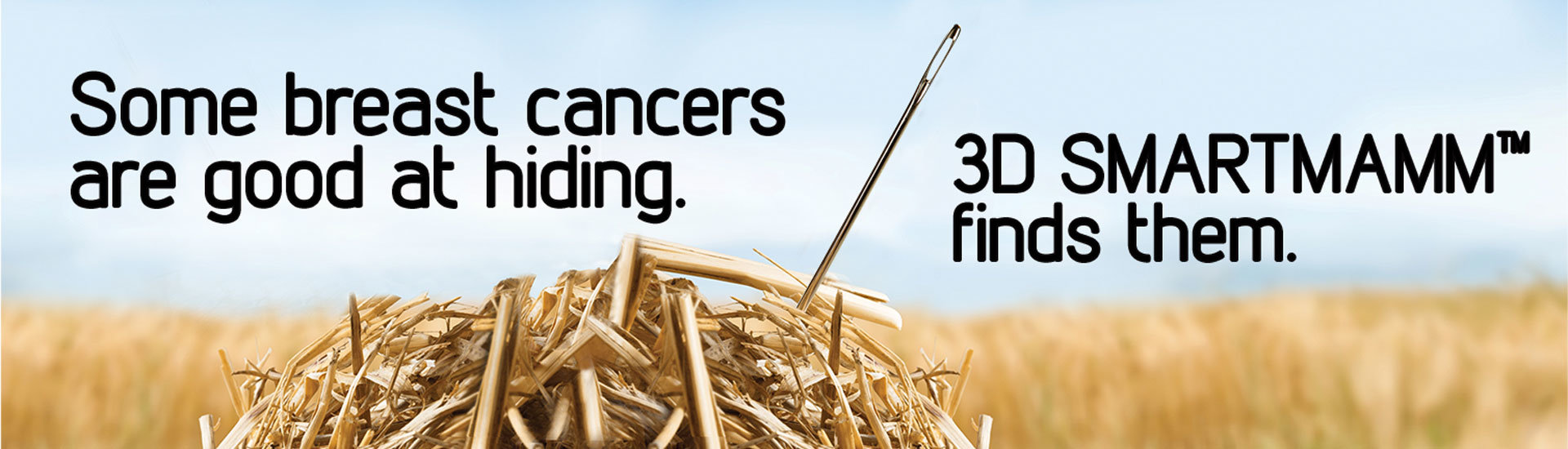 Breast Cancer Needle in a Haystack